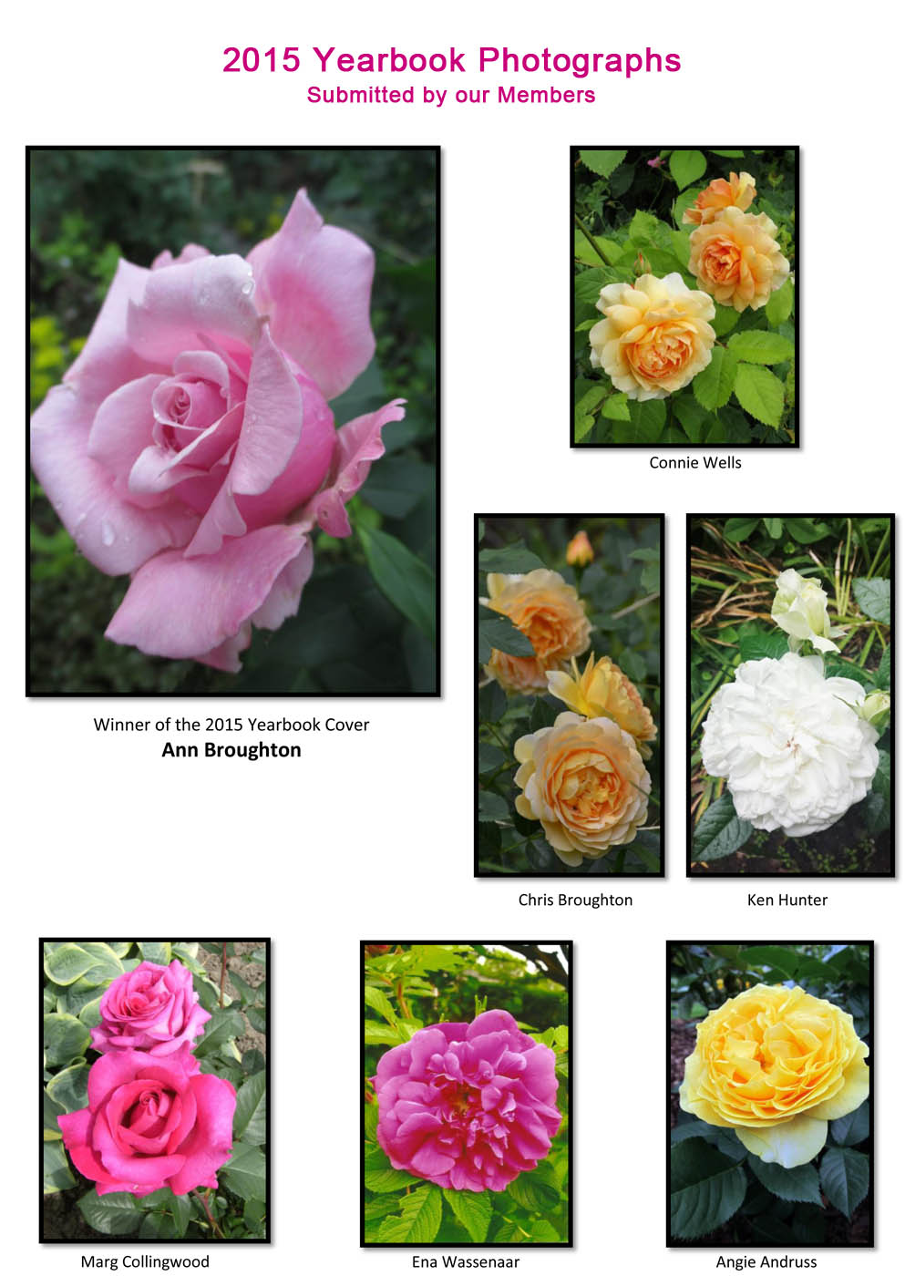 Uxbridge Horticultural Society - 2015 Yearbook Photographs submitted by our members