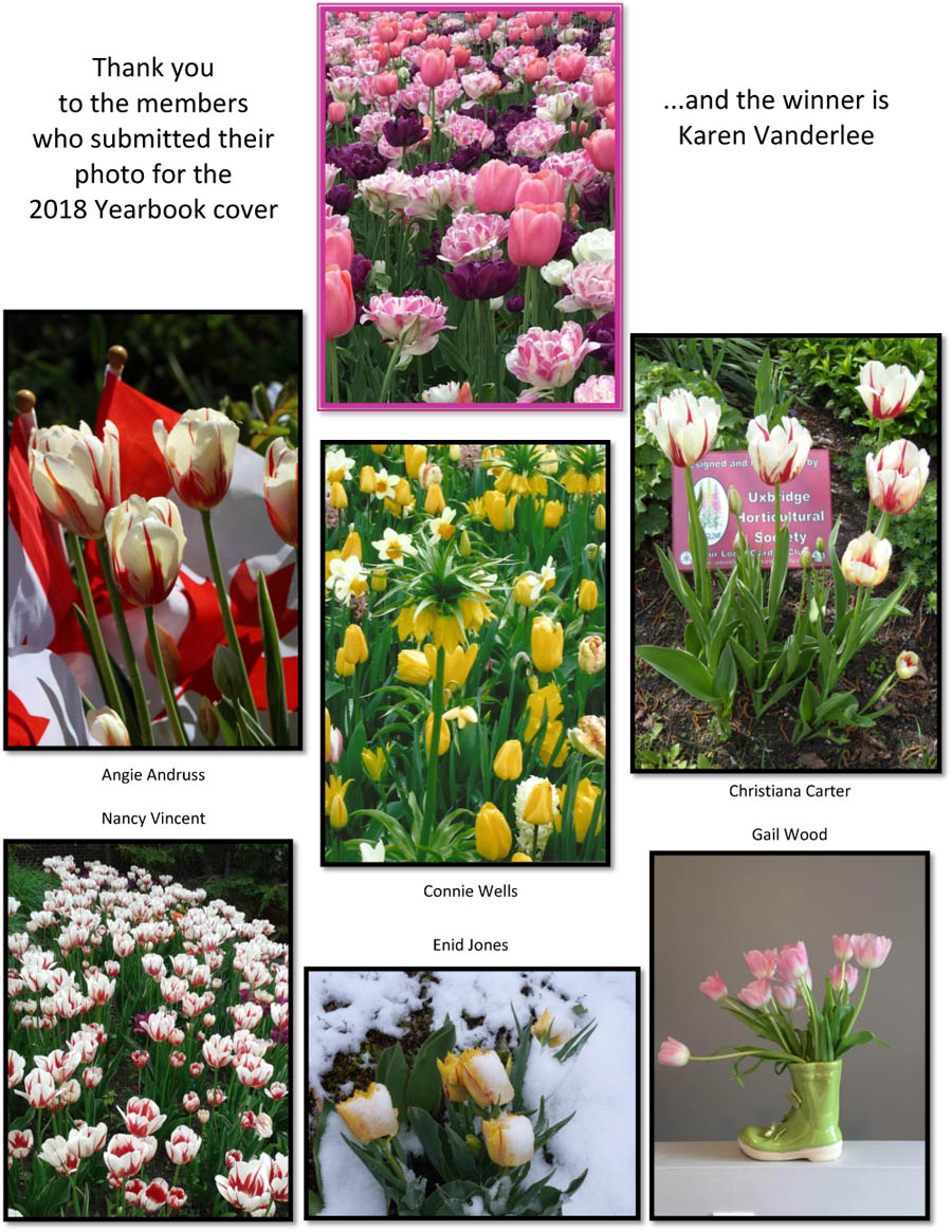 Uxbridge Horticultural Society 2018 Yearbook Cover Entries
